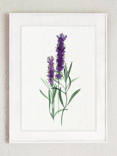 Sage Art print Lavender Watercolor Painting by ColorWatercolor