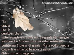 Osho-La vera saggezza (Grazia)