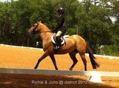 Judge My Ride Premium Evaluation Winner – Richie Costello and Juno