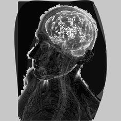 Human Brain, Grey T Shirt By ElArrogante Design By Humans Ringer Tee, Brain, Tank Man, Long Sleeve Tees, Sweatshirts, Grey, Prints, Design, The Brain
