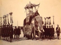 The state durbar decorated elephant, with attendants of the Maharaja of Mysore. Royal India.