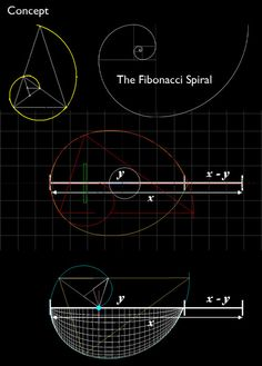 "Fibonacci spiral, the "" golden mean"""