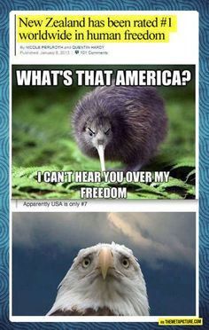 In your face, America Funny Shit, Stupid Funny Memes, Funny Cute, Haha Funny, Funny Posts, Hilarious, Funny Stuff, Random Stuff, Random Things