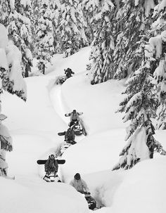 Riding That Way. I can almost feel the freshness in the air and the dampness of the snow. Winter Love, Winter Snow, Winter White, Gaudi, Snow Fun, How To Make Snow, The Ranch, Winter Sports, Outdoor Fun