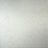 """F. Polenghi, """"Senza titolo 4"""", 2013, oil on canvas, cm 150 x 150."""