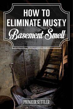 eliminate musty smell in basement musty garage musty basement basement