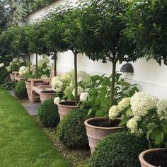 If you are looking for Small Garden Design Ideas, You come to the right place. Below are the Small Garden Design Ideas. This post about Small Garden Design Ideas. Backyard Garden Design, Backyard Fences, Small Garden Design, Front Yard Landscaping, Fence Garden, Landscaping Design, Backyard Privacy, Garden Borders, Big Garden