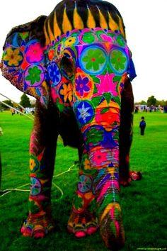 elephanntt