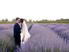 Bear Flag Farm Winery Wedding Organic Farm Weddings Wine Country Wedding Venue California 95694 | Here Comes The Guide