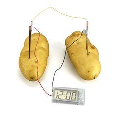 DIY - Fruit Powered Clock - DIY - Toys