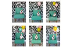 really cute idea of adding balloons to the month to month pictures!