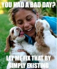 lady and the tramp cocker spaniel - Google Search