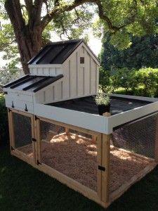 Poulailler en bois avec toit terrasse