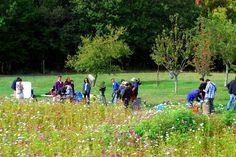 """""""Fleurs et brumes"""", la série romantique chinoise tournée en France, a choisi le cadre enchanteur d'Eyrignac comme décor pour une partie de ses scènes #eyrignac #tournage #jardin #fleurs #dordogneperigord"""