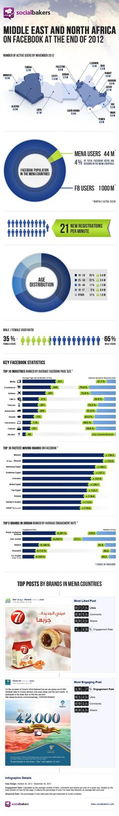 Facebook in the MENA region in 2012: Users, brands and industries