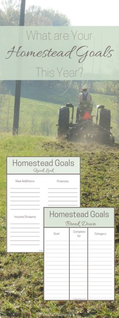 Effective growth on the homestead requires a lot of thought & planning. This year, I decided to create two sheets to help us re-evaluate homestead goals.