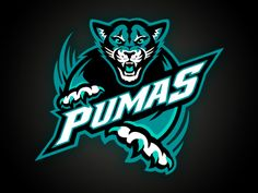 One of the marks I worked on for a school out in CA. Go PUMAS!