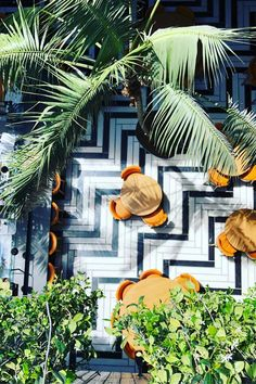 Miami, a cultural city guide: rich in cutting-edge art and culture, there's more to Magic City than pool parties and Art Deco icons… Outdoor Restaurant Design, Restaurant Hotel, Restaurant Exterior Design, Miami Beach Restaurants, South Beach Hotels, Miami Art Deco, Art Basel Miami, Miami Beach Edition, Perez Art Museum