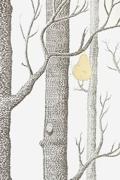 Woods & Pears Wallpaper A re-worked classic contemporary white wallpaper with the addition of gold metallic pears on Charcoal illustrated winter trees.