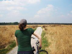 De Hoge Veluwe National Park, The Netherlands
