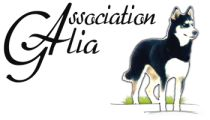 L'association Galia fonctionnant sur la base de familles d'accueil, les chiens ne sont pas tous présents au refuge.