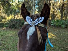 Eagles Flight Beaded Equine Browband - Native American Style Horse Brow Band - American Indian Style Tack - Ready to Ship Horse Costumes, Eagle Wings, Thing 1, Bead Sewing, Indian Tribes, Native American Fashion, American Indians, Eagles, Indian Fashion