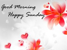 Sundays are all about enjoyment, relaxation and the best day to spend with your loved ones! And Sundays are the most loved day as it tied without worrying about the rushed mornings. Here are the best collection of good morning sunday images feom bulkq Good Morning Friday Images, Happy Sunday Images, Good Morning Happy Sunday, Morning Quotes Images, Sunday Quotes Funny, Good Morning Photos, Good Morning Messages, Morning Msg, Good Evening Wishes