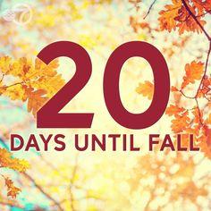 September, Symbols, Letters, Fall, Dogs, Autumn, Fall Season, Letter, Lettering