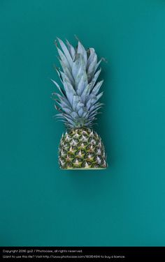 half ananas, turquoise, colourful photo, bright colour, colour blocking, food styling, still life photography