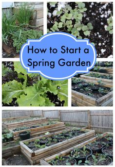 How to Start a Spring Garden! It's not too late!!! #gardening