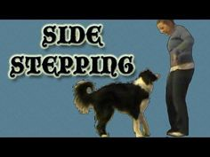 Dog Trick, Train your dog to side step for canine freestyle or doggie dancing. Pamela Johnson www. Dog Clicker Training, Agility Training For Dogs, Dog Agility, Dog Training Tips, Dog Games, Old Dogs, Dog Behavior, Dog Life, Tricks