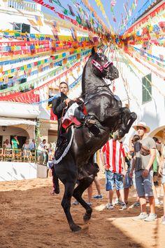 Ferreries #Menorca #caballos #horses