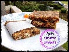 Apple Cinnamon Larabars (Paleo Snacking) - Healthy snacking and so YUMMMMMM.