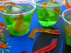Swamp Punch! Mix green juice or gatorade with sprite for a swamp juice treat. When the guests arrive you can put in some pop rocks and watch the swamp juice bubble and pop!
