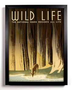 Wild Life 1930s Americana Print,  8 x 10 Vintage Upcylced  National Park Ranger Posters, Buy 2 get 1 FREE. $9.99, via Etsy.