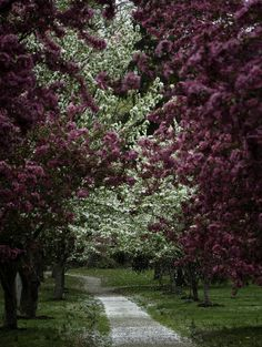 Everhart Park, West Chester, Pennsylvania