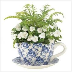 Gifts & Decor Blue Floral Teacup Saucer Decorative Garden Planter, http://www.amazon.com/dp/B0081LJV6O/ref=cm_sw_r_pi_awdm_pl4Kwb1VDMBJ0