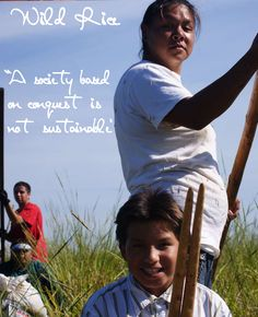 """""""Manoomin, """"The Food That Grows on the Water"""". White Earth Wild Rice Harvest- Manoominikewaag - By Winona LaDuke - Honor the Earth - www.nativeharvest.com"""""""
