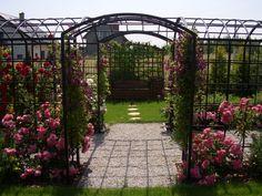 Projektowanie ogrodów Kielce, Ogrody Kielce,Róże w ogrodzie przydomowym.