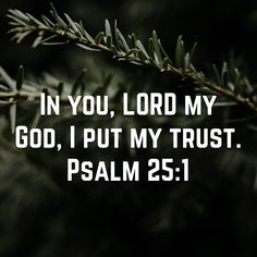 Father God, I put my faith and trust in You and You alone ! Bible Verses Quotes, Bible Scriptures, Religious Quotes, Spiritual Quotes, Quotes About God, Quotes To Live By, Cool Words, Wise Words, Psalm 25