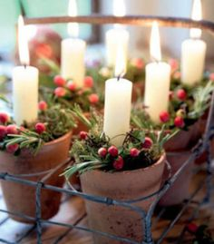 Silent night Candles are romantic and really set the scene at Christmas - so why not pop a few into rustic flower-pots, surrounded by berries, and share out across the tables?