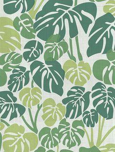 Aimee Wilder Deliciosa Fabric | Aimee Wilder