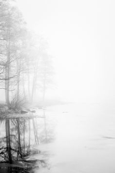 Thick fog over Lilla Horredssjön in Sweden. Magical photograph of a lake whith reflections of the trees in the water. Photograph by Gabriella Koning, available as poster at printler.com, the marketplace for photo art.