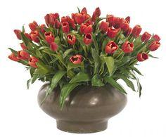 O | Tulip