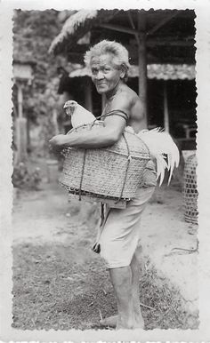 OPOI: Balinese Man with huge rooster in a Basket ~ Bali ~ Indonesia ca 1930