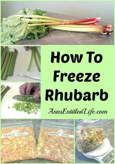 How To Freeze Rhubarb. Easy step by step directions on how to freeze rhubarb. A great way to enjoy the sweet tart taste of rhubarb in recipes year round. Freezing Vegetables, Fruits And Veggies, Freezing Fruit, Rhubarb Freezing, Can You Freeze Rhubarb, Freezing Cabbage, How To Cook Rhubarb, Freezer Cooking, Freezer Meals