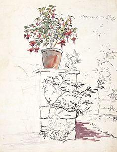 beatrix potter - flowers