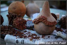 gourd for fairy house