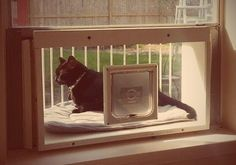 Cat Solarium, the stylish, open-air solarium with a panoramic view. A true solarium just for cats.