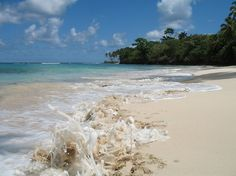 The long, pristine stretch of sandy Playa Caleton in Las Galeras was blissfully empty of tourists and became a favorite spot. Photo: Margo Pfeiff